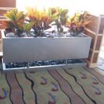 Anthony's planter box
