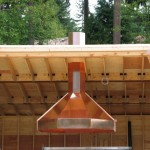 Giant Copper Hood 2